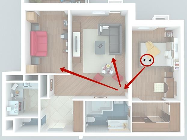 распространение клопов по квартире